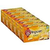 Teekanne Ingwer 6er Pack