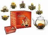 Creano Teeblumen Mix - Geschenkset Erblühtee Frühjahrslese mit Glaskanne Weißer Tee in 6 Sorten, Teerosen, Teeblume, Blooming Tea, Geschenk für Frauen, Mutter, Teeliebhaber