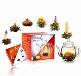 Creano Teeblumen Mix - Geschenkset ErblühTee mit Glaskanne 500ml Weißtee & Schwarztee mit 6 Teekugeln je 3x weißer & schwarzer Tee, Geschenk für Frauen, Mutter, Teeliebhaber